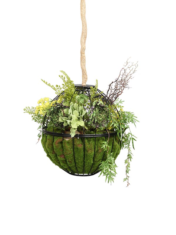 Hanging Globe Vegetation