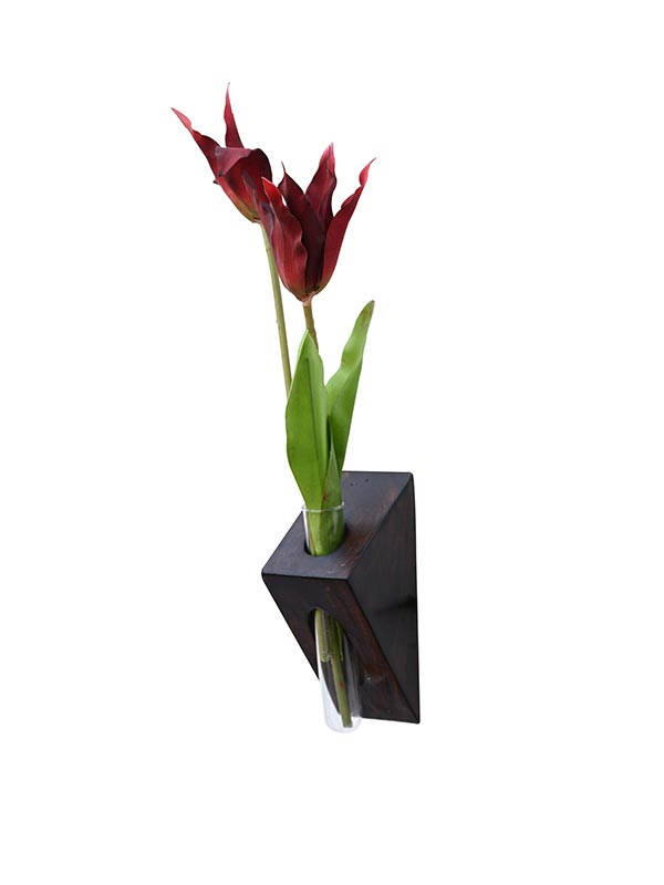 Bird Of Paradise Test Tube Wall Planter