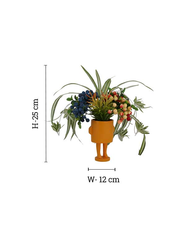 Berry Potted Plant (GIFT)