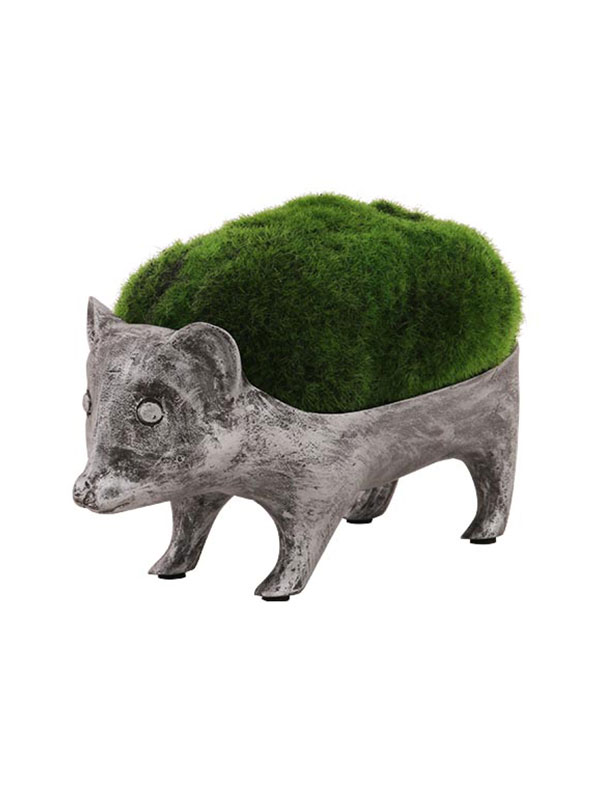 Racoon Planter