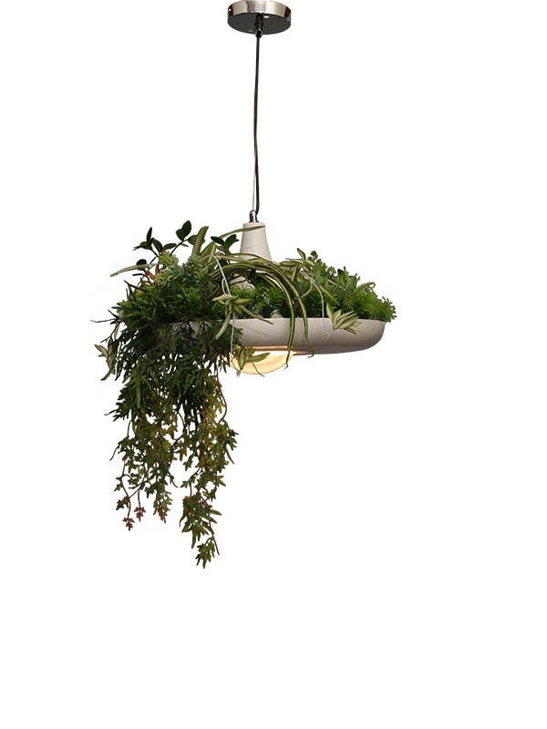 Botanical Hanging Light