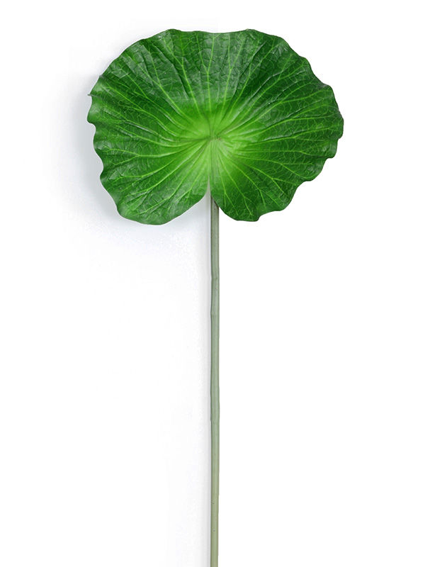 Lily Leaf (Small)