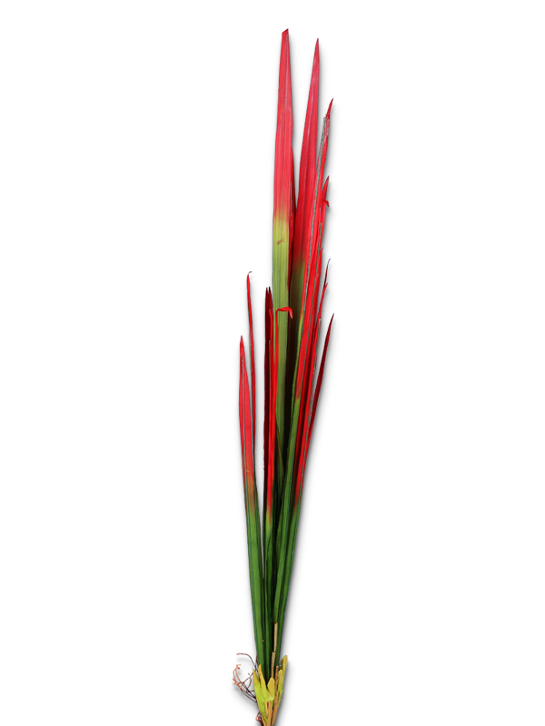Gao Liang Leaf Stick (Red)