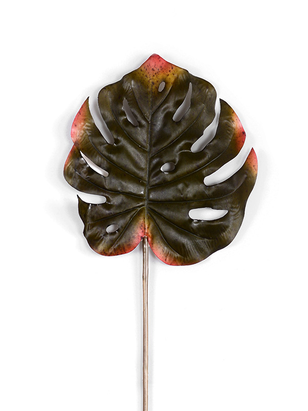 The Great Big Leaf