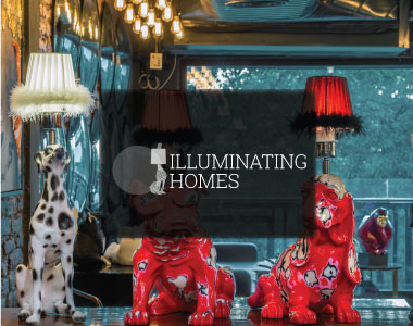 Illuminating Homes
